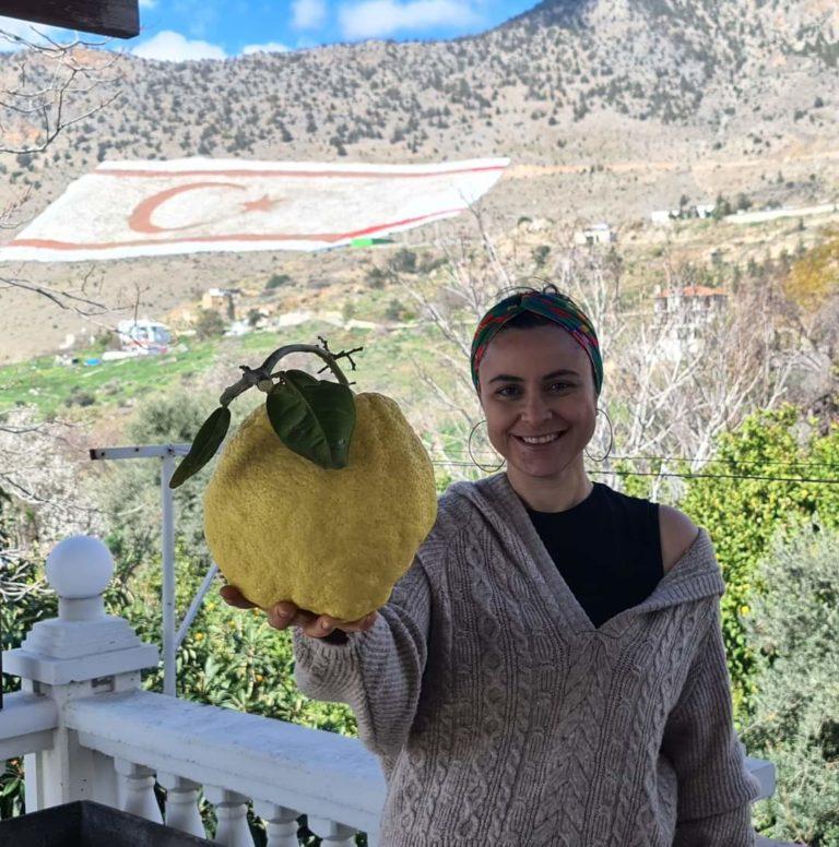 Лимон весом более 2 кг
