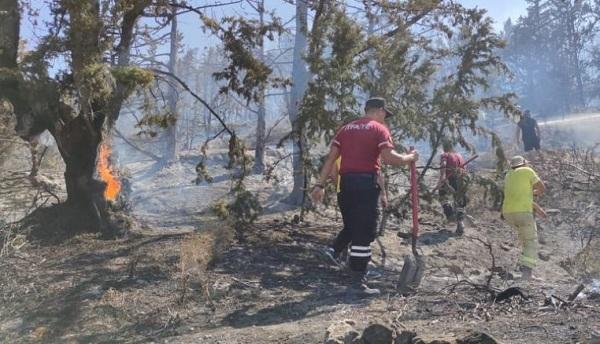 Пожар повредил 30 акров земли в Каршияке